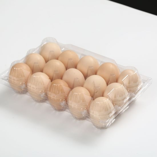 15 Hole Plastic Pet Blister Egg Tray for Packaging
