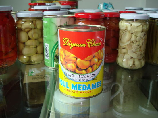 Canned Broad Bean Factory From China