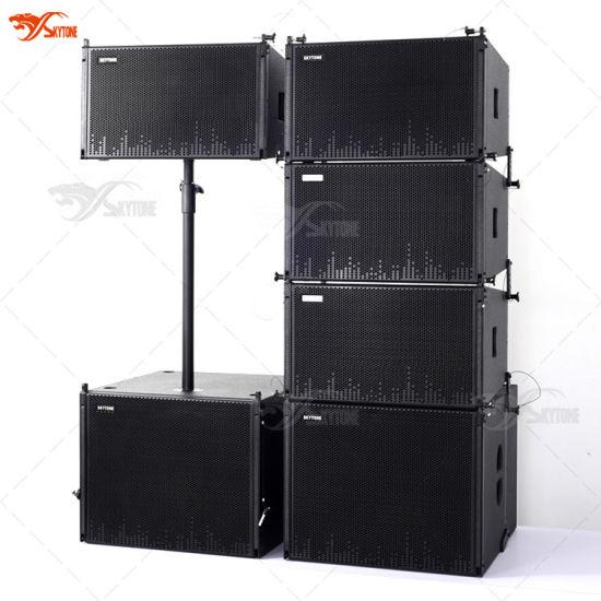 "Live Show Sound System Skytone New 12"" Vera12 Line Array Speaker"