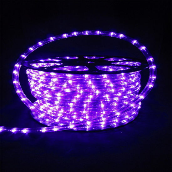 China high brightness waterproof outdoor purple round 2 wires led high brightness waterproof outdoor purple round 2 wires led rope light aloadofball Choice Image