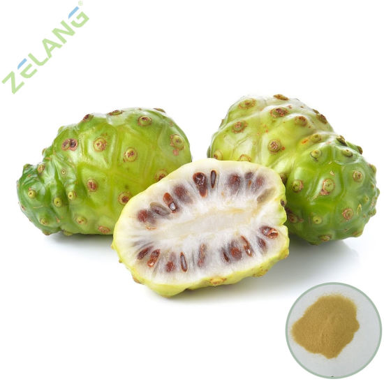 Natural Water Soluble Noni Extract
