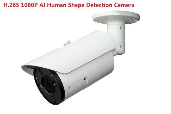 Fsan 2MP IR Infrared Human Car Detection Smart Ai Intelligent IP Camera