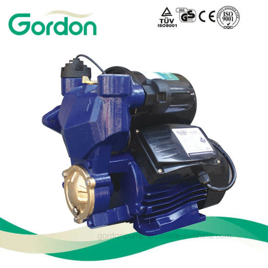 Self-Priming Electric Pump with Micro Cp for Car Washing pictures & photos