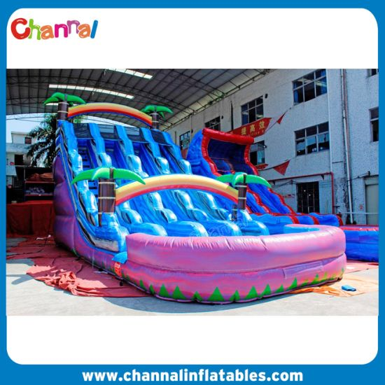 Purple Blue Triple Slides Water Slide Inflatables for Sales pictures & photos