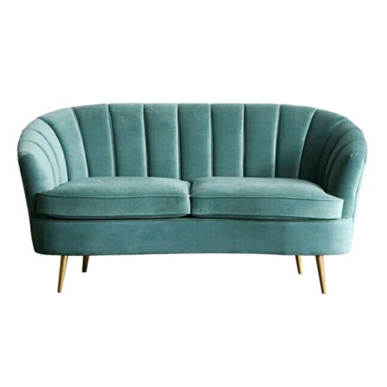 China Wholesale Furniture 2 Seat Velvet Loveseat Sofa for Home