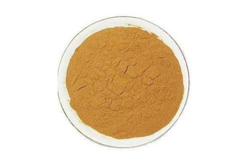 Green Tea Extract 45%/98% EGCG