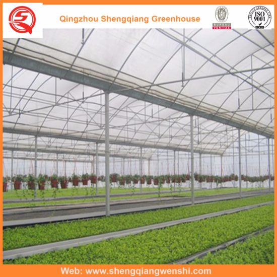Polyethylene/Plastic Film Vertical Farming Companies Greenhouse Hydroponics for Vegetables/Flowers/Fruit/Gardens