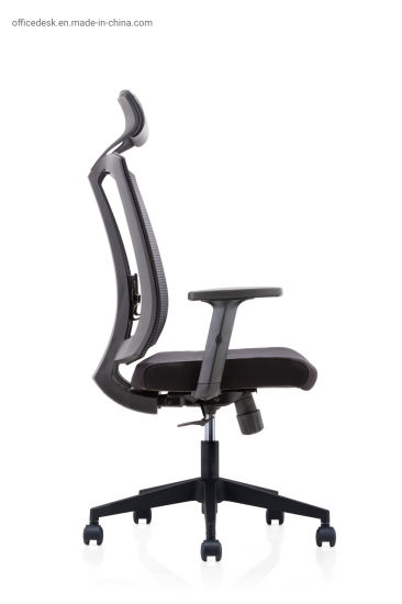 Ergonomic High Back Swivel Eames Executive Mesh Office Chair with Adjustable Backrest (HY-163A-LPG) pictures & photos
