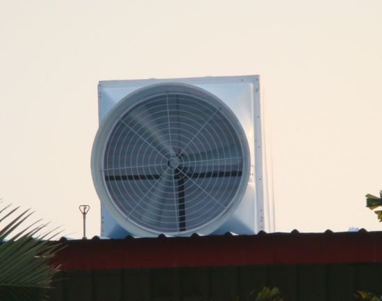 Roof Fan/ Top Roof Exhaust Fan/ Roof Ventilation /Roof Ventilator pictures & photos