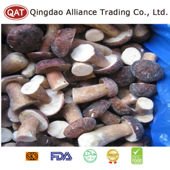 Top Quality Whole Boletus Mushroom with Good Price pictures & photos