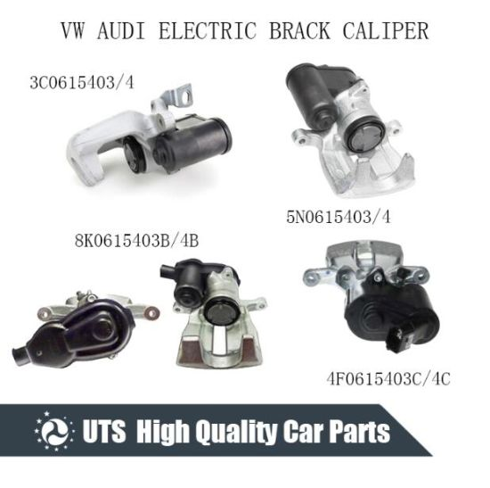 China Rear Electric Brake Caliper for VW Audi 3c0615403