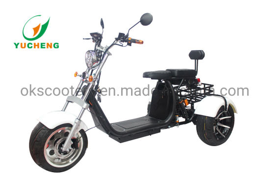 Wholesale Price Smart Design Halley Three Wheel Mobility Scooter with Two Removable Seats