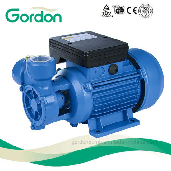 Gardon Electric Brass Impeller Peripheral Water Pump with Steel Casting pictures & photos