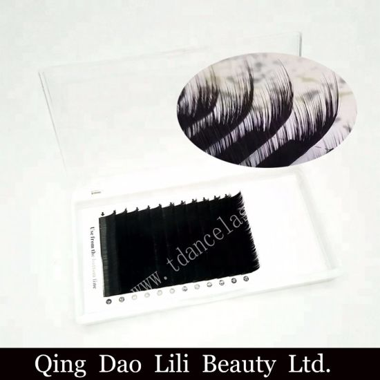 2cefd0c9863 False Eyelash Manufacturer Direct Grafting Eyelash Camellia Lashes pictures  & photos