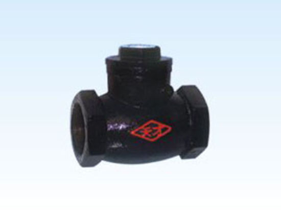 Internal Threaded End Manufacturere Supplied Casting Iron Swing Check Valve