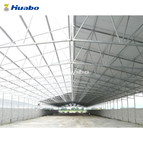 Tight Designed Steel Poultry Shed for High Density Broiler Farming