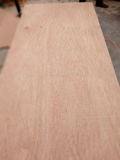 3.6mm The Philipines Market Hot Sale Furniture Making Commercial Plywood pictures & photos