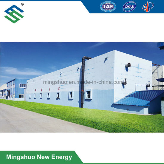 Dry Fermentation for Biogas Plant with High Ts%