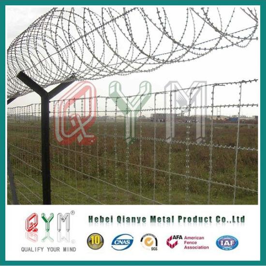 China Razor Barbed Wire /Galvanized Concertina Razor Wire Low Price ...