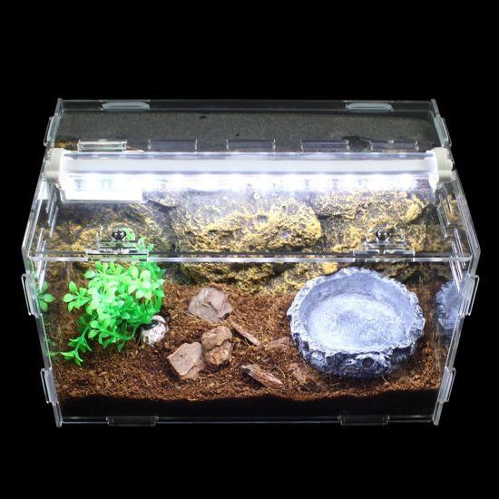 China Factory Supply Acrylic Artificial Landscape Reptile Terrarium