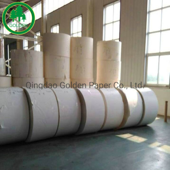 300g PE Coated Paper Board for Cake Boxes, Cups