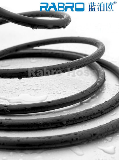 Bathtub Shower Hose for Shower Head and Faucet pictures & photos