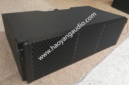 Ds210 Two-Way Line Array Professional Audio