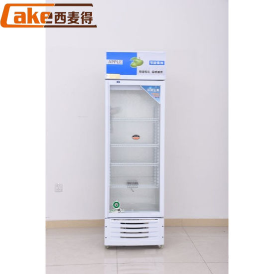 Floor Stand Cold China Retail Commercial Equipment Drink Fridge Freezer Showcase for Wholesale