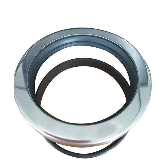 China Akoken PTFE 2901500500 Double Lip Oil Seal - China Oil
