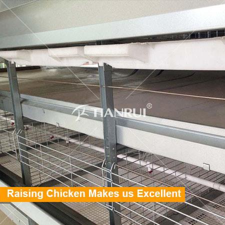 Broiler poultry farm house design/automatic poultry equipment