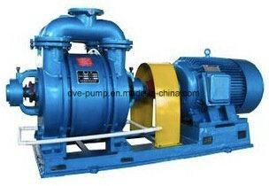 Single Grade Water Loop Pump Used for Food Industry Vacuum Drying