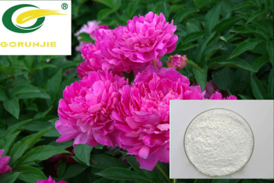 High Quality Natural Paeoniflorin 98% HPLC pictures & photos