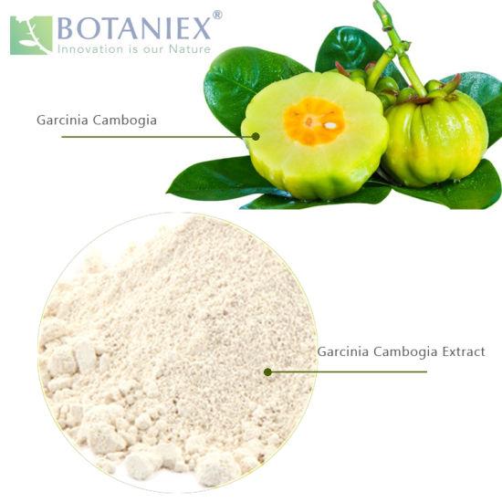 China B Garcinia Cambogia Extract Powder Hydroxycitric Acid For Weight Loss China Garcinia Cambogia Extract Garcinia Cambogia Extract Powder