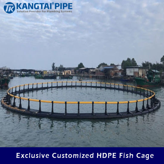 Customized Farm HDPE Fish Cage for Aquaculture Net Cages with Net Fishing Cage