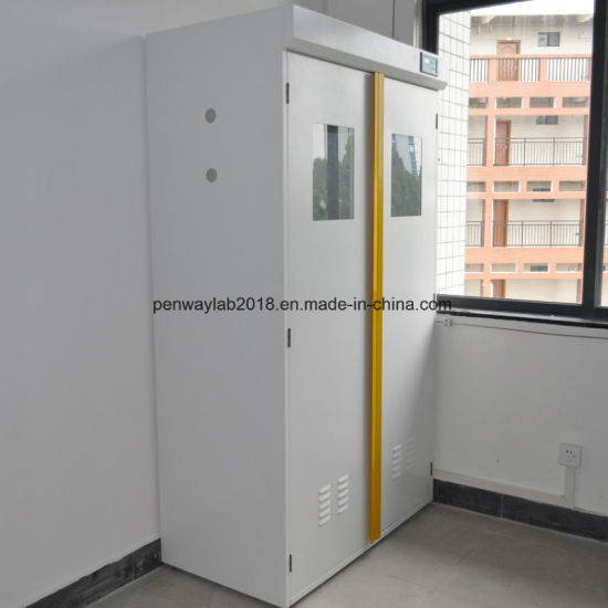Lab Gas Cylinder Cabinets High Cabinet for Laboratory pictures & photos