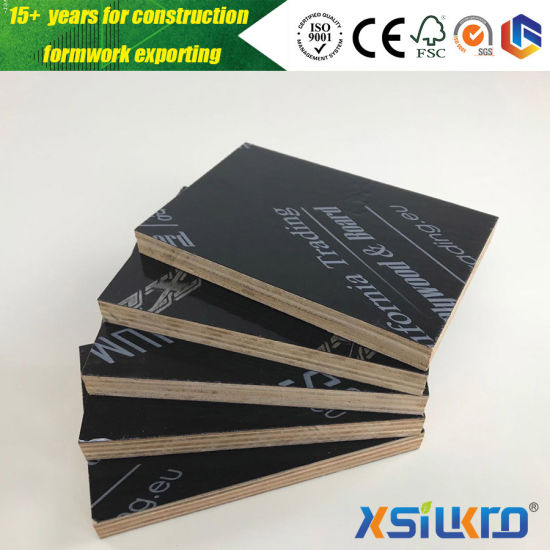 China Black PP Film Faced Plywood More Times Reused Plastic Plywood