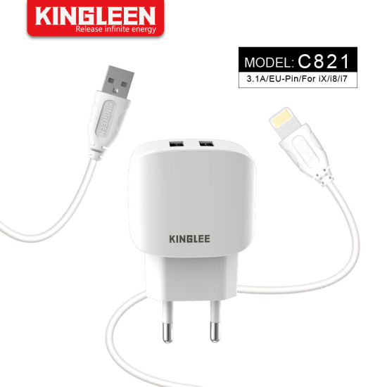 Model C821 Intelligent Charger Suit for iPhone Cable
