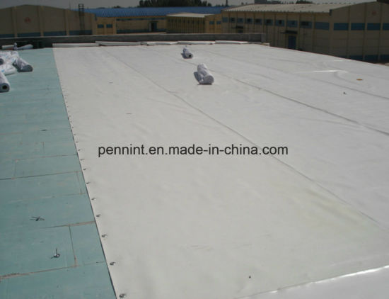 60 Mil Thickness Homogenous/Reinforcement Tpo Waterproof Membrane with ISO Certificate pictures & photos