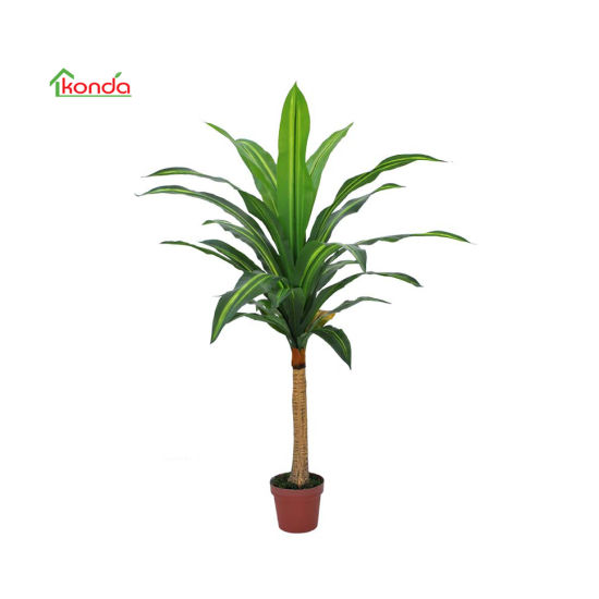 Good Quality Factory Supplier Real Touch Tree Artificial Dracaena Fragrans Tree