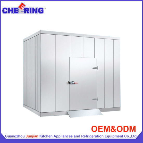 Commercial Walk In Meat And Vegetable Freezer Cold Room