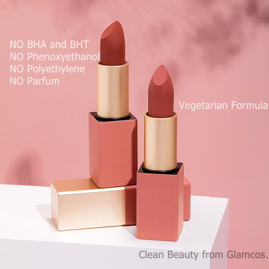 Private Label Long Lasting Makeup Vegan Cosmetic Waterproof Matte Lipstick