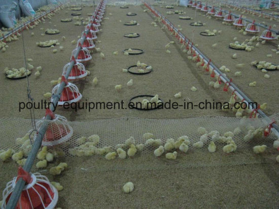 2018 Modern and Advanced Automatic Chicken Raising Equipment for Broiler, Breeder, Layer Chicken