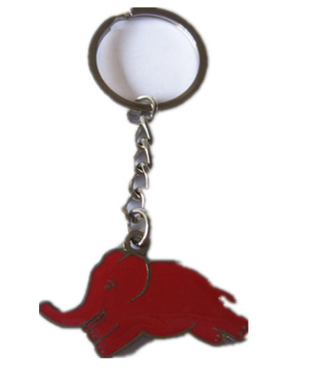 Keychain with Nickle Ring