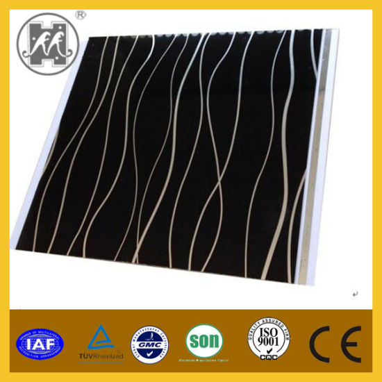 Newly Design PVC Panel for Wall Decoration pictures & photos