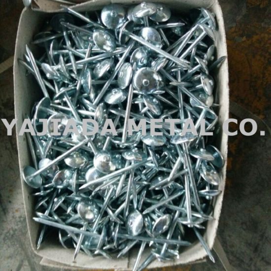Galvanized Roofing Nails Umbrella Roofing Nails