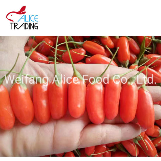 Long Shape And Sweet Taste Health Food Produced From China Dried Goji Berry China Dried Fruit Dried Goji Berry