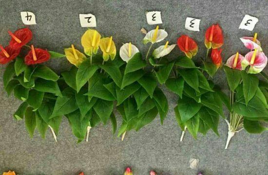 High Quality of Artificial Flowers of Anthirium Gu14958517609061