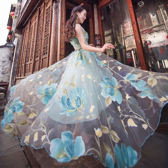 Blue Color Ladies Chiffon Floral Printing Dress, Wholesale OEM pictures & photos