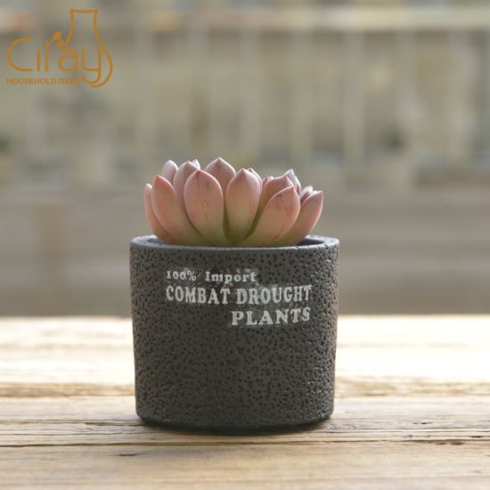 Cylinder Cement Plant Pot with Different Sizes
