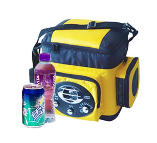 Car Mini Fridge 6 Liter, DC12V with Radio for Cooling and Warming pictures & photos